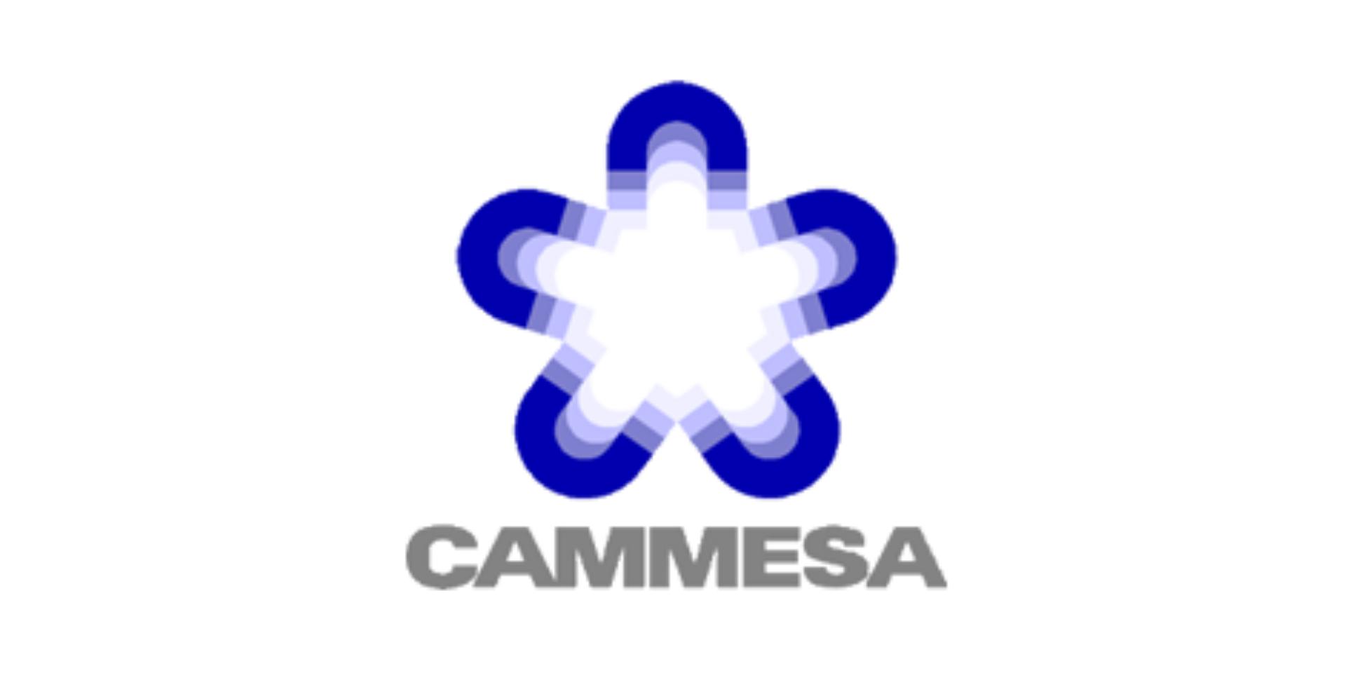 CAMMESA Compañía Administradora del Mercado Mayorista Eléctrico